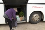 Ostokset linja-autoon ja kotiin